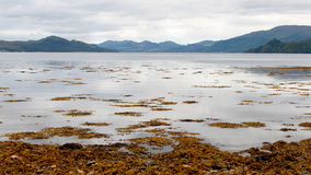 Loch fyne Royalty Free Stock Photo