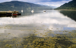 Loch fyne Royalty Free Stock Photos