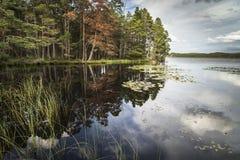 Loch Garten in Autumn colour in Scotland. Royalty Free Stock Photography