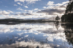 Loch Garten in Cairngorms National park of Scotland. Royalty Free Stock Photo