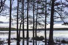 Loch Garten in the Cairngorms National Park of Scotland. Royalty Free Stock Photo