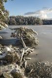 Loch Garten-Winter im Nationalpark Cairngormss Lizenzfreie Stockfotos