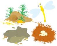 Loch, Grube, Nest und Libelle Stockfotos