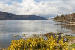 Loch Linnhe -Scotland Royalty Free Stock Photos
