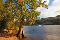 Loch Lomond在10月,苏格兰 免版税库存照片