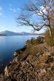 Loch Lomond海岸线 库存图片