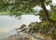 Loch Lomond视图 免版税库存照片