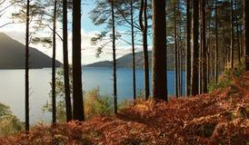 Loch Lomond стоковая фотография rf