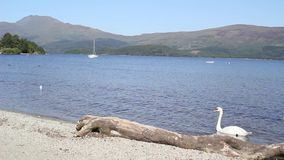 Loch Lomond in Luss, Scotland, UK, HD footage. Beautiful Loch Lomond in Luss, Scotland, UK, HD footage stock video footage
