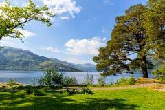 Loch Lomond på rowardennan, sommar i Skottland, UK Fotografering för Bildbyråer