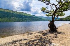 Loch Lomond Scozia immagine stock