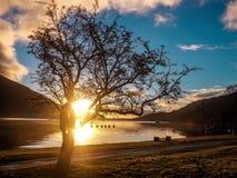 Loch Lomond wschód słońca Zdjęcie Royalty Free