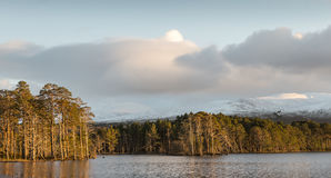 Loch Mallachie in Scotland. Loch Mallachie in the Cairngorms National Park stock images
