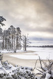 Loch Mallachie Winter In Scotland. Snow and Ice on Loch Mallachie in the Cairngorms National Park of Scotland Stock Images