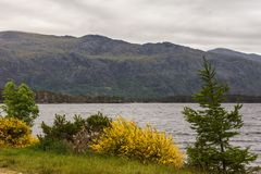Loch Marlee mit Berg, Schalter-Hochländer Schottland Lizenzfreies Stockfoto
