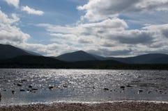 Loch molich Stockfotografie