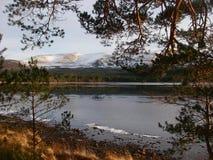 Loch Morlich stock afbeeldingen