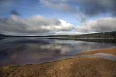Loch Morlich beach Royalty Free Stock Photos