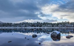 Loch Morlich and winter forest Stock Photo