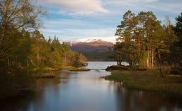 Loch Morlich dans le soleil de soirée Photos stock