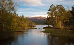 Loch Morlich in der Abendsonne Stockfotos