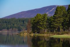 Loch Morlich with Glenmore Forest and mountains of Cairngorms. Loch Morlich with Glenmore Forest and mountains of the Cairngorms in Scotland Royalty Free Stock Photography
