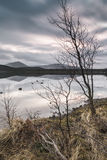 Loch Morlich in the Highlands of Scotland. Royalty Free Stock Images
