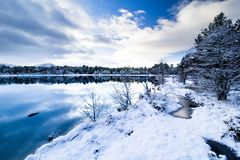 Loch Morlich winter landscape Royalty Free Stock Photo