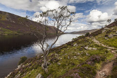 Loch Muick in Aberdeenshire, Scotland. Royalty Free Stock Photography