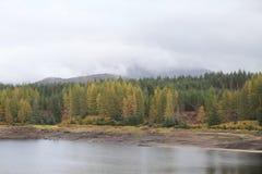 Loch Ness, Lochness/ Zdjęcia Stock