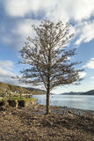 Loch Ness view from Dores in Scotland. Royalty Free Stock Photos
