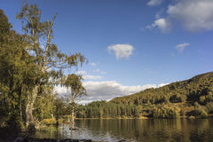 Loch Pityoulish in the Cairngorms National Park of Scotland. Loch Pityoulish in Summer in the Cairngorms National Park of Scotland Royalty Free Stock Photo