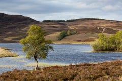 Loch Tarff Royalty Free Stock Images