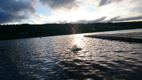 Lochaber Lake, Nova Scotia Royalty Free Stock Photo