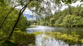Lochan blisko roztoki Coe, Szkocja Obrazy Royalty Free