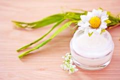 Loción/crema hidratante orgánicas naturales de la belleza Foto de archivo libre de regalías