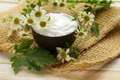 Loción poner crema cosmética natural con la manzanilla Foto de archivo