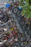 Lock bicycle on rack Royalty Free Stock Photo
