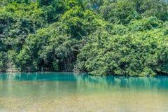 Lock bredvid en flod med reflexion Arkivfoton