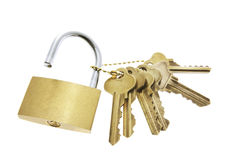 Lock and a Bunch of Keys Royalty Free Stock Images
