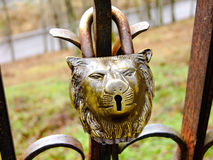Lock on the Fence. Lock of Lion Head on the rusted Fence Stock Photos
