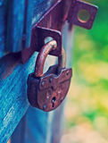 Lock on Fence for Security Royalty Free Stock Photo
