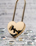 Lock in the form of a heart with key Royalty Free Stock Photo