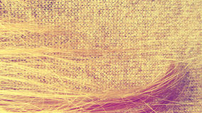 Lock hair cloth Stock Images