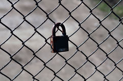 Lock hanging on  grid Stock Photography