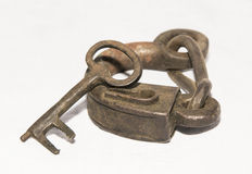 Lock horse Stock Image