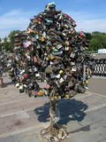 Lock keys tree Royalty Free Stock Images