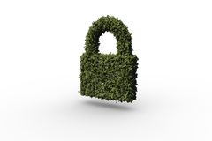 Lock made of leaves Stock Images