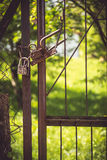 Lock on the metal gate Royalty Free Stock Image