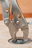 lock pliers and nut Royalty Free Stock Image